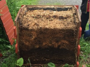 kompostiskiktnärbild